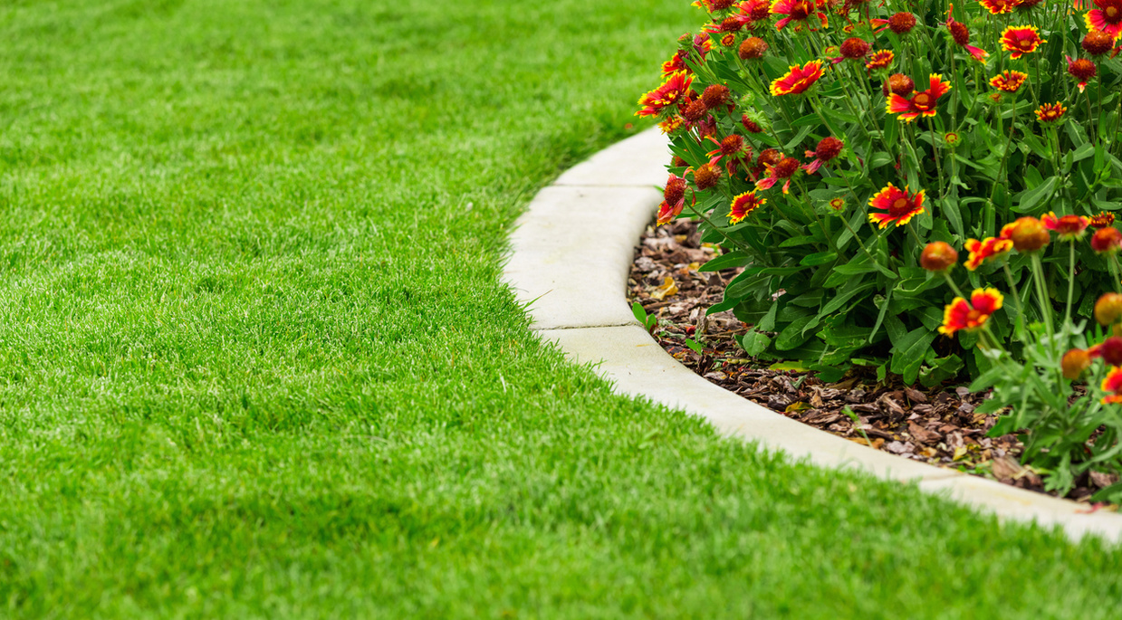 Landscaping Business-Serving Augusta Area For 20 Yrs for sale in Columbia County Georgia lawncare  Businesses for Sale lawncare