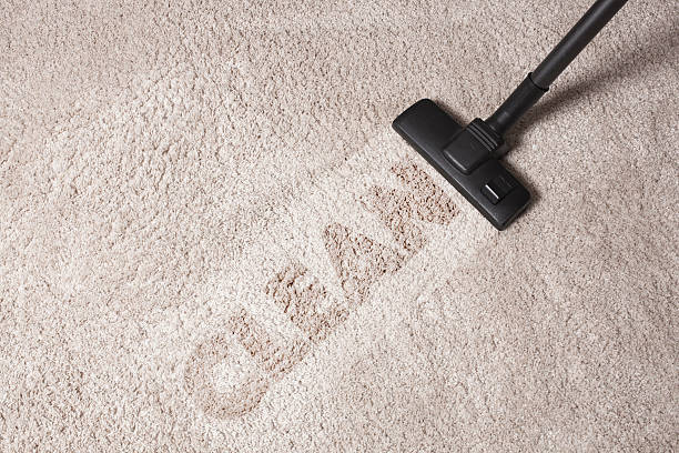 Professional Carpet Cleaning Business carpet cleaning 2